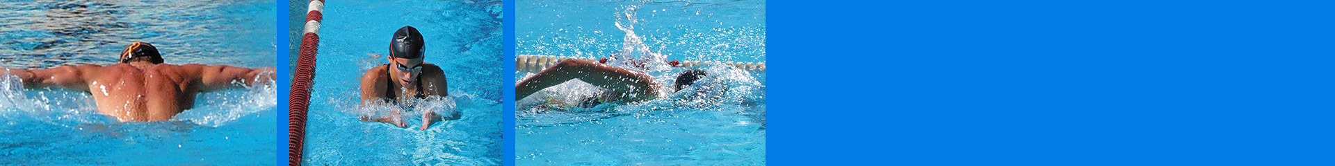 bg-1920×240-nuoto-senior